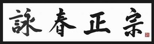 Wing Chun origineel